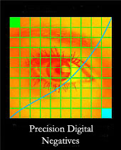 Precision Digital Negatives, by Mark Nelson